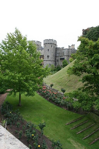Windsor Castle (9)