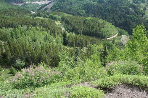 Durango to Silverton (2)