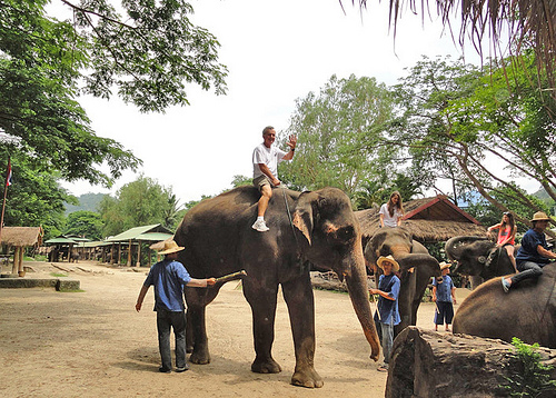 John at Elephant Park in Thailand (1)