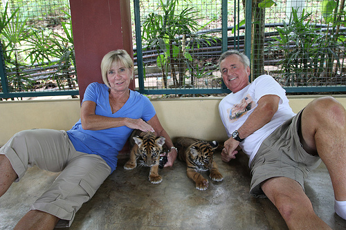 Bengal Tiger Park