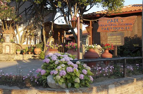Paul's Taverna