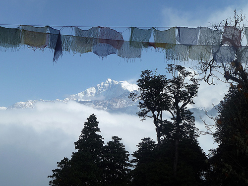 Prayer Flags at a Pass