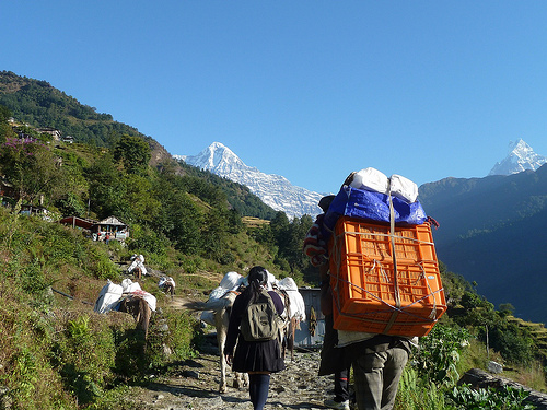 A Busy Trekking Trail