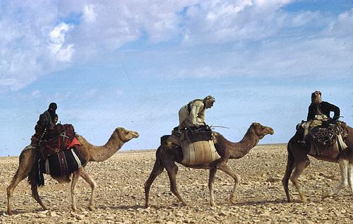 Bedouin – 1949