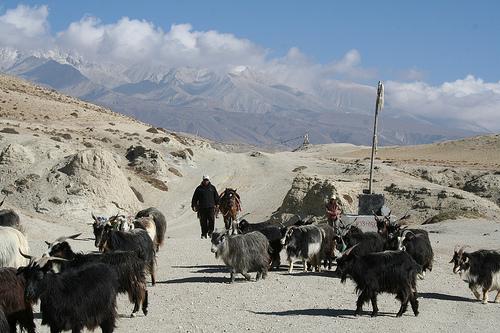 Trekking Mustang Nepal (46)